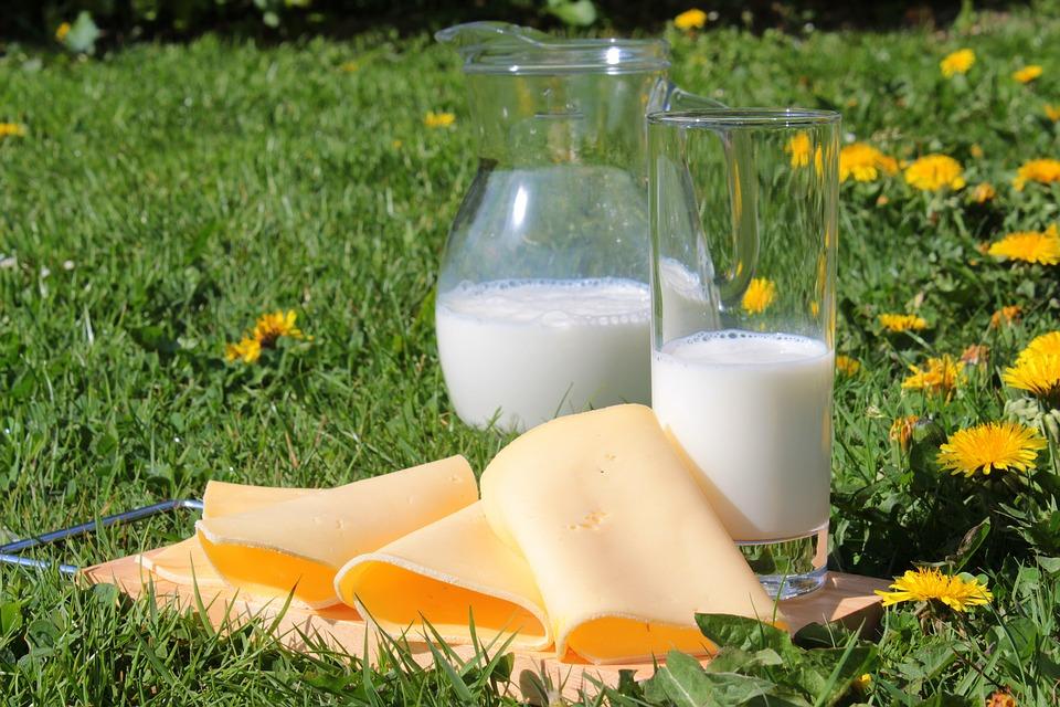 Giornata mondiale del latte, anche l'Italia è in festa