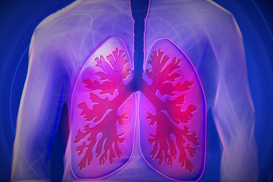 Una misteriosa polmonite di natura virale si sta diffondendo in Cina: finora 44 casi