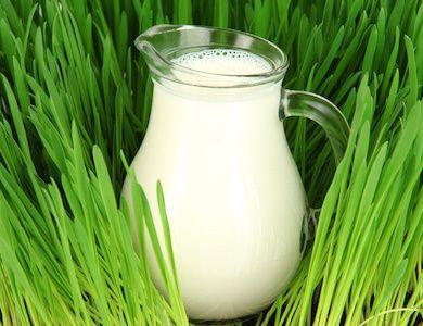 In Italia è boom di latte addizionato con Vitamina D: vediamo a cosa serve